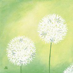 Dandelions, Photos and Prints at Art.com