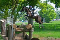 Badminton Horse Trials - Nicola Wilson, Opposition Buzz .... one of the best cross country photos I've seen....