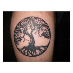 Tattoos / Tree of Life tattoo | Flickr - Photo Sharing! found on Polyvore