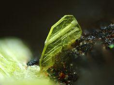 Uranocircite, Ba(UO2)2(PO4)2·10H2O, Assunção Mine, Aldeia Nova, Ferreira de Aves, Sátão, Viseu District, Portugal. Fov 1.3mm. Copyright © Yaiba Sakaguchi