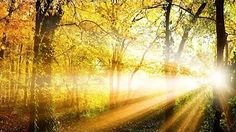 """Morning Music for Positive Energy, Instrumental Music, """"Nature's Sunrise"""" by Tim Janis. My instrumental music can help you find deep relaxation, relieve anxi. Violin Music, My Music, Morning Music, Deep Relaxation, Quiet Moments, Relaxing Music, Finding Peace, Sunrise, Around The Worlds"""