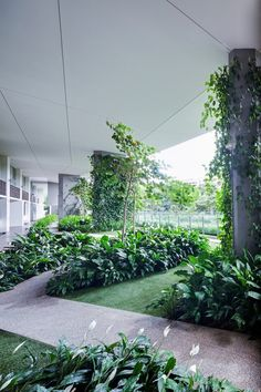 Image 12 of 16 from gallery of Jardin / DP Architects. Courtesy of DP Architects Tropical Architecture, Landscape Architecture, Landscape Design, Tropical Landscaping, Tropical Garden, Garden Landscaping, Sky Garden, Garden Park, Dp Architects