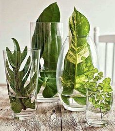 What to put in a glass vase Many original ideas! What to put in a glass vase Many original ideas! When decorating a glass vase we always resort to the typical flowers. Today we also want to propose other simple but very original ideas. Wedding Centerpieces, Wedding Table, Wedding Decorations, Table Decorations, Green Centerpieces, Garden Wedding, Party Wedding, Green Party Decorations, Leaf Decoration