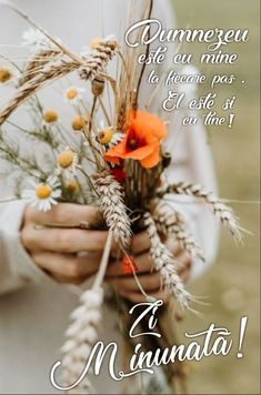Dandelion, Faith, Wreaths, Flowers, Plants, Beautiful, Bible, Door Wreaths