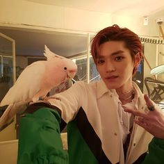 Taeyong yestoday