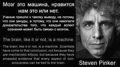 Мозг это машина, нравится нам это или нет. | Lafox.Net