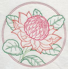 Waratah Flower Outline Machine Embroidery Designs at Embroidery Library! - New This Week Embroidery Flowers Pattern, Cute Embroidery, Modern Embroidery, Vintage Embroidery, Blackwork Embroidery, Embroidery Motifs, Machine Embroidery Designs, Cross Stitch Flowers, Cross Stitch Patterns