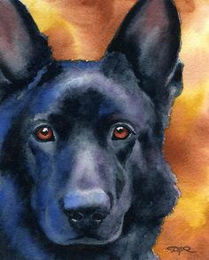 I found dog art that looks like loki!!! <3<3<3 BLACK GERMAN SHEPHERD Dog Art Print Signed by by k9artgallery, $12.50