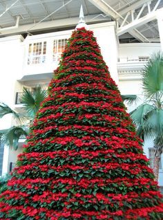 Make A Poinsettia Tree? Would love to do this AFTER Christmas (ps ...