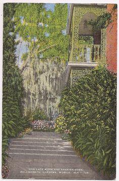 Mobile Alabama Spanish Moss , Bellingrath Gardens vintage postcard