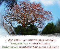 ... der Fokus von multidimensionalen Perspektiven ~ wird mit dem  Durchbruch mentaler Barrieren möglich !