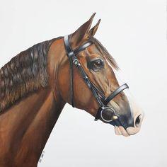 """Mi piace"": 1,205, commenti: 20 - Kate Spratt Equine Art (@kate_spratt_equine_art) su Instagram: ""Daisy ❤ www.katesprattart.com #katesprattart #pencilart #horse #horsesofig #horsesofinstagram…"""