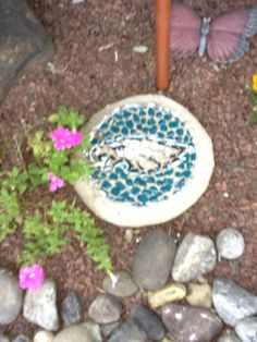 Eagles stepping stone