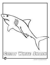 Great White Shark Endangered Animal Coloring Page