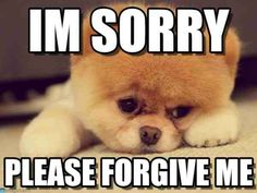 A simple sorry can save your relation and release your worries. Sorry memes can make your way easy to apologize and can put a smile on their face. Share and tag Best 21 I'm Sorry Memes with ones whom you want to say sorry. Best 21 I'm Sorry Memes Im Sorry Meme, I Am Sorry Quotes, Pomeranian Memes, I Miss You Meme, Apologizing Quotes, Puppy Images, Tier Fotos, Decir No, Funny Animals