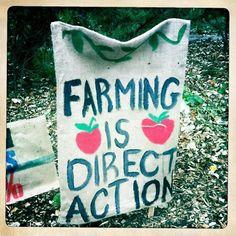 wallacegardens:  Grow your own.  via persephonesunset  via Patio Farm
