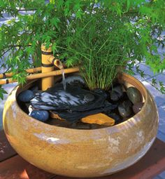 Another cute little fountain. This is prettier than the other. Hmmm...catnip in the fountain? ;)