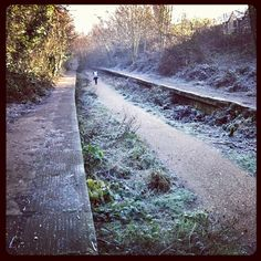 Highgate to Finsbury Park abandoned railway line in winter . I spent most of my childhood playing on this disused railway . Very fond memories:-)
