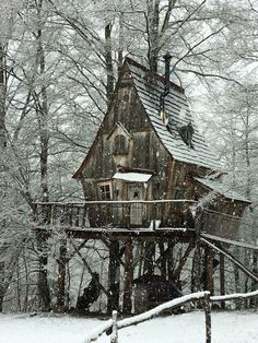 Tree house in winter Cool Tree Houses, Old Houses, Abandoned Houses, Abandoned Places, Tree House Designs, Baba Yaga, Forest House, Cabins And Cottages, Cabins In The Woods