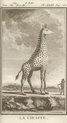 """Giraffe from """"The Natural History, general and particular"""", 1776 by Georges–Louis Leclerc de Buffon"""