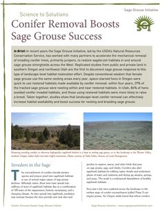 Brianna Randall, Author at Sage Grouse Initiative - Page 2 of 22