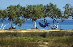 The freedom of Paradise.   http://www.visitgreece.gr/en/accommodation/camping_in_greece