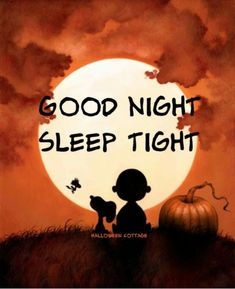 Good Night Prayer, Good Night Blessings, Good Night Wishes, Good Night Sweet Dreams, Snoopy Love, Charlie Brown And Snoopy, Snoopy And Woodstock, Morning Love Quotes, Good Night Quotes