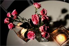 Simple centerpieces with pink roses - Photo by Jeremy