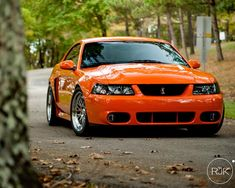 A sweet looking competition orange cobra. | Ford SVT Cobra ...