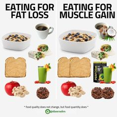 Eating For Fat Loss vs Muscle Gain ? - - The first thing people need to realize when it comes down to losing fat or building muscle is Gourmet Recipes, Whole Food Recipes, Dog Food Recipes, Diet Recipes, Healthy Recipes, Weight Gain Meals, Healthy Weight Gain, Weight Loss, Lost Weight
