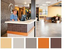 3 color palettes that work for veterinary practice - Hospital Design
