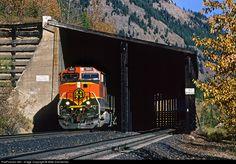 RailPictures.Net Photo: BNSF 980 Burlington Northern Santa Fe GE C44-9W (Dash 9-44CW) at Java, Montana by Mike Danneman