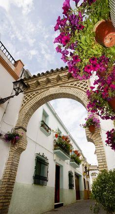 BARRIO DEL CERRO. Este barrio de calles encaladas y balcones engalanados con bellas flores, antiguo arrabal cristiano, conserva todo el sabor que describiera don Juan Valera en sus obras.