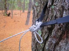 Just Jeff's Hammock Camping Page. How to attach a hammock. Lots of info!