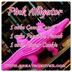 Pink Alligator Scentsy Recipe