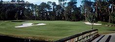 Disney's Magnolia Golf Course - Gendron Golf