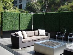 Faux Privacy Hedge