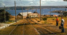 Gap Loop, above Watson's Bay. The view made this line great trip Metro Rail, Old Photos, Railroad Tracks, Sydney, Gap, Australia, Cabin, House Styles, Old Pictures