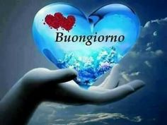 Good morning sister and all, have a lovely Tuesday, God bless 😂💙💔🐣🐇⛅. Good Morning Sister, Blessed, Mornings, 3, Italy, Night, Good Morning Wishes, Fantasy, Pictures