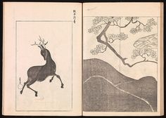 Ogata Kōrin | One Hundred Newly Selected Designs by Kōrin (Kōrin shinsen hyakuzu) | Japan | Edo period (1615–1868) | The Met Deco Paint, Deer Illustration, Tibetan Art, Edo Period, Japanese Design, Japanese Artists, Textile Prints, Manga Art, Asian Art