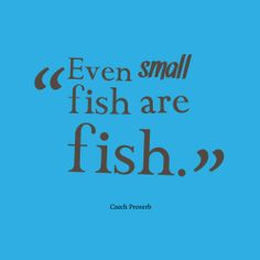 Even-small-fish-are-fish.__quotes-by-Czech Proverb-69