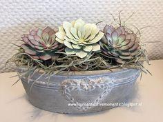 """Even de Succulent Garden Framelits Dies aan het uitproberen voor een workshop """"Vetplantjes"""" (van papier) bij het woonzorgcentrum volge..."""