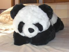 My Panda stuff toy...