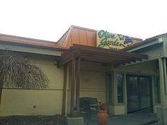 olive garden albany ny - Olive Garden Albany Ny