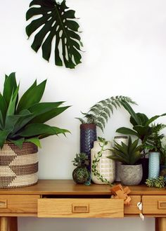 Entrance hall makeover: two different looks, via we-are-scout.com. Photography by Lisa Tilse for We Are Scout. #plants #indoorplants #console #midcentury #home