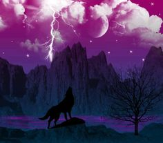 Purple howl