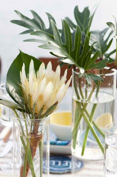 Tropical weddings are in trend, this is new classics! If you are going for such a wedding, if you want some bold tropical-inspired decor, I. Tropical Home Decor, Modern Tropical, Tropical Houses, Tropical Interior, Tropical Furniture, Tropical Wedding Reception, Wedding Reception Decorations, Wedding Table, Reception Ideas