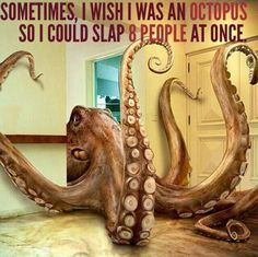 Being An Octopus Can Be Useful