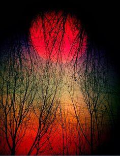 Crimson luna