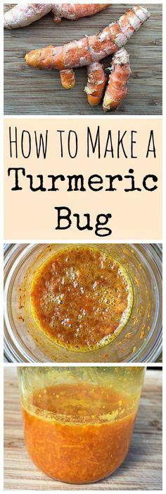 Start a turmeric bug so that you can make a naturally fermented turmeric soda!